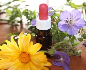 Cistite emorragica: terapia omeopatica